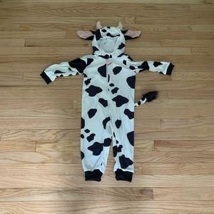 24m FAO cow costume
